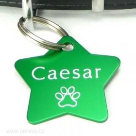 Zelená id psí známka s gravírováním jména - zelená hvězda